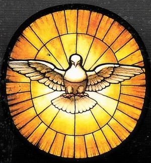 paloma-lo spirito santo.