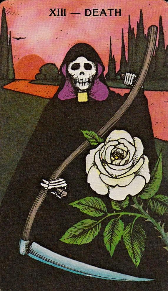 Eros-rose