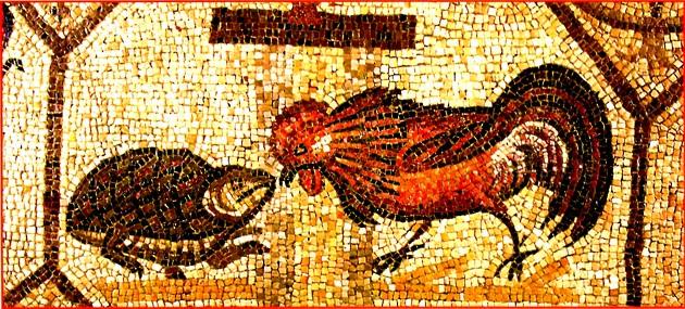 aquileia-mosaico-gallo-e-tartaruga-iv-dc